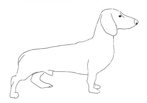 Как нарисовать таксу карандашом поэтапно
