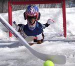 Такса в костюме хоккеиста стоит на воротах